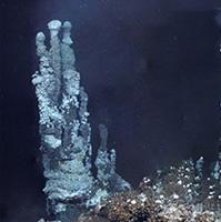 Deep-ocean vents fuel massive phytoplankton blooms
